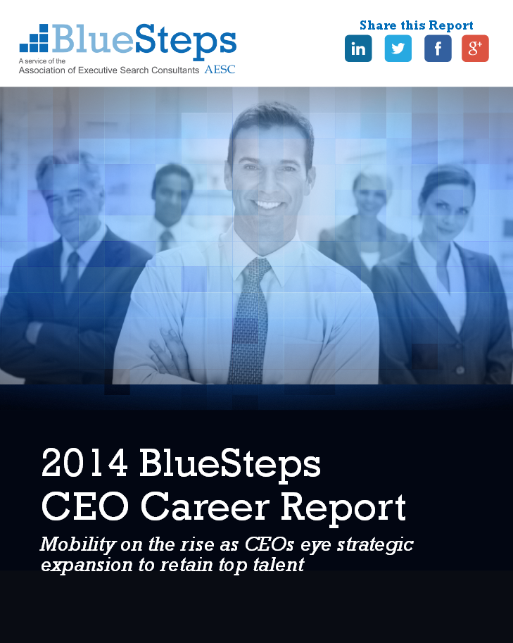 2014 BlueSteps CEO Career Report