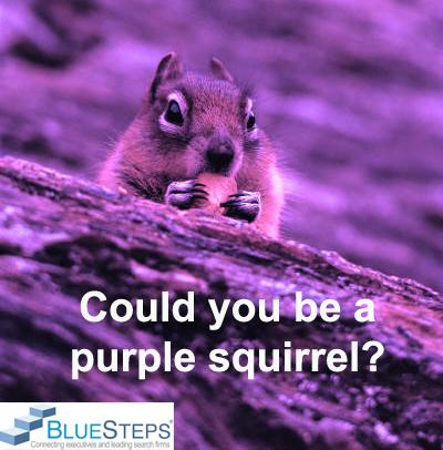 executive_job_search_purple_squirrel